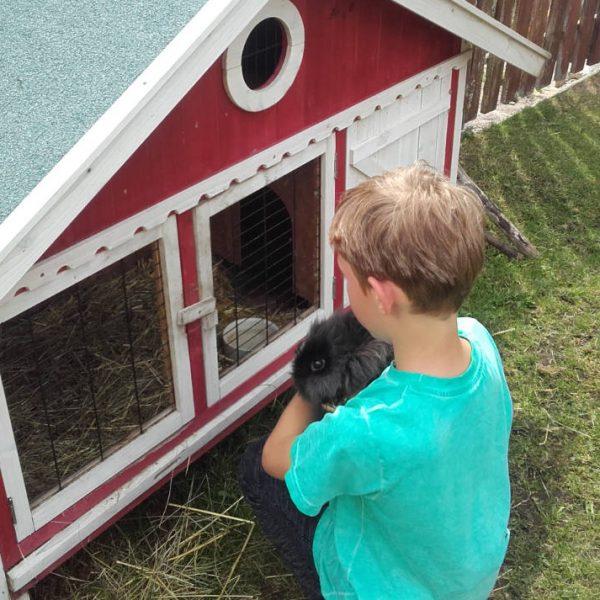 Hasen und Kind am Urlaubsparadies Moserhof